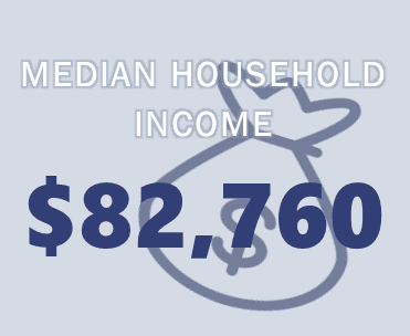 Median Household Income Infographic