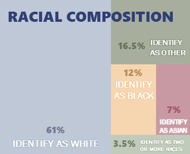 Racial Composition Infographic