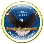 Public Safety Eagle Police and Fire logo