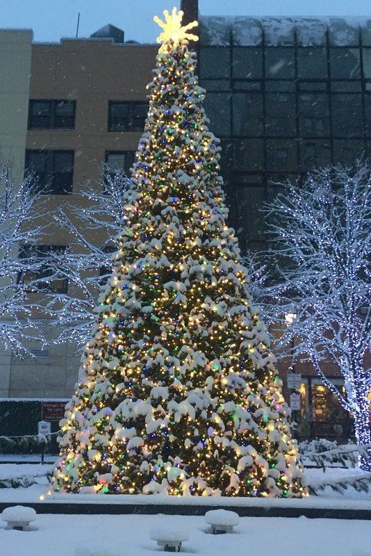Renaissance Square Christmas tree 2017