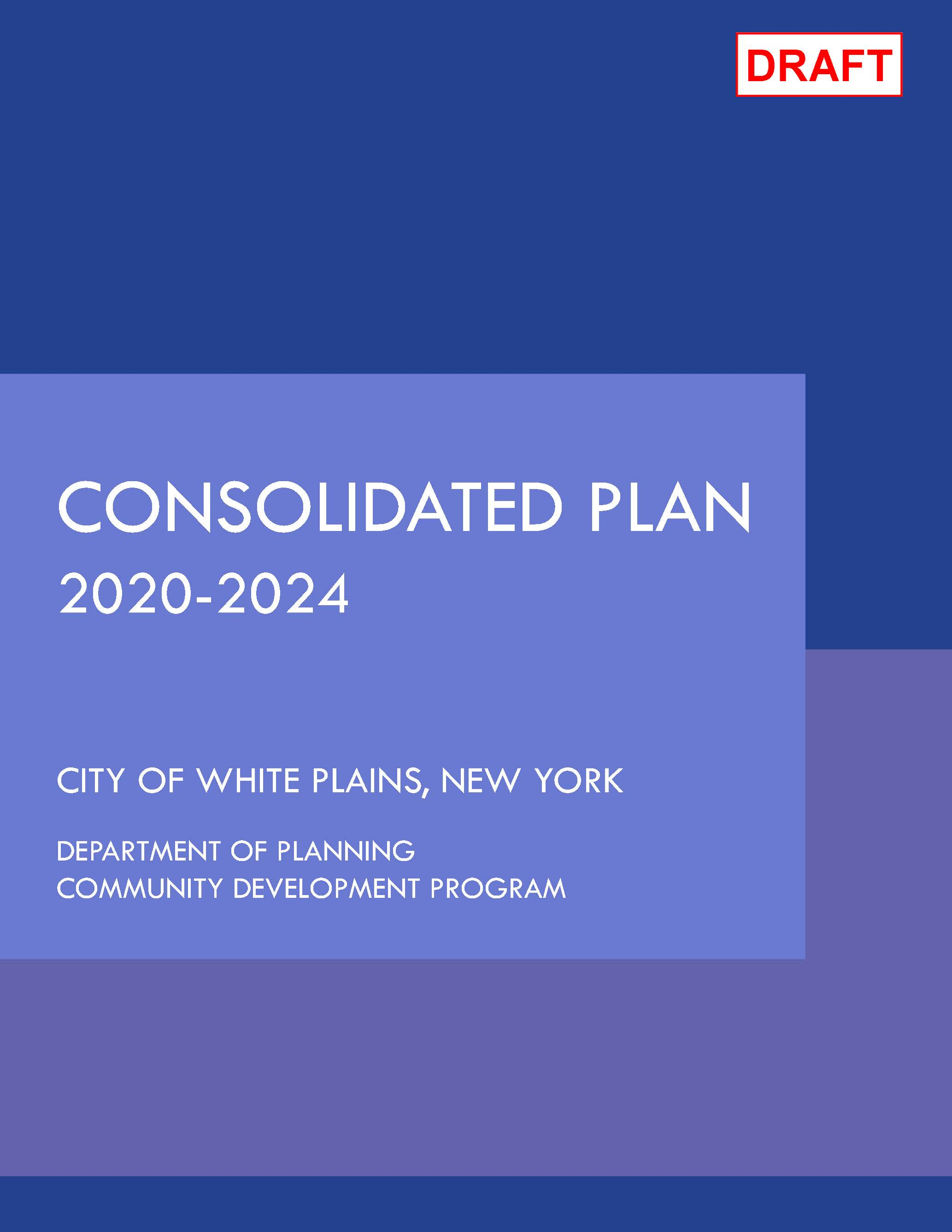 DRAFT 20-24 Consolidated Plan